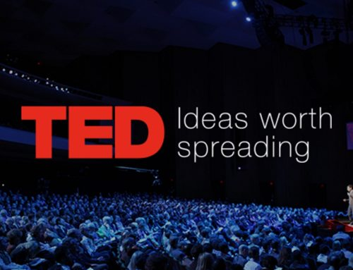 Best TED Talks From The Curator Himself